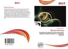 Capa do livro de Bruno Correa