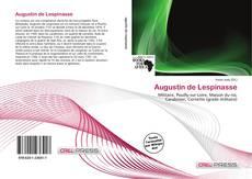 Portada del libro de Augustin de Lespinasse