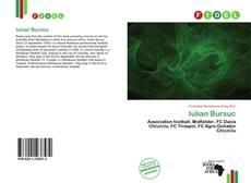 Bookcover of Iulian Bursuc