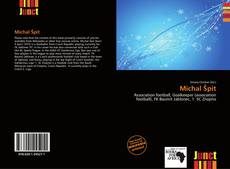 Bookcover of Michal Špit