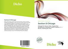 Bookcover of Section 8 Chicago