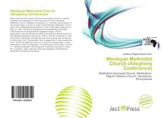 Bookcover of Wesleyan Methodist Church (Allegheny Conference)