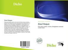 Обложка Ziaul Haque
