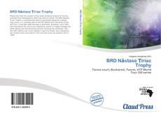 BRD Năstase Țiriac Trophy的封面