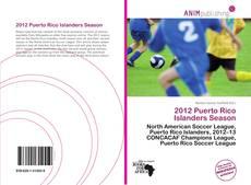 Bookcover of 2012 Puerto Rico Islanders Season