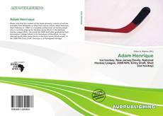 Adam Henrique kitap kapağı