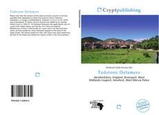 Capa do livro de Tedstone Delamere