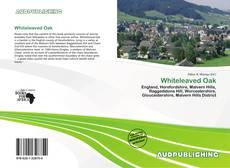Bookcover of Whiteleaved Oak