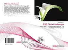 Bookcover of BRD Sibiu Challenger