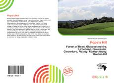 Bookcover of Pope's Hill