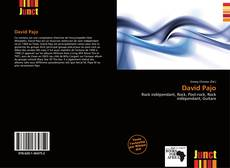 Capa do livro de David Pajo