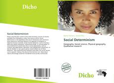 Bookcover of Social Determinism
