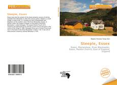Steeple, Essex kitap kapağı