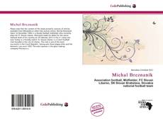 Bookcover of Michal Breznaník
