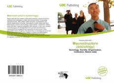 Bookcover of Macrostructure (sociology)