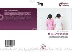 Bookcover of Social Environment