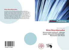 Bookcover of Nino Bourdjanadze