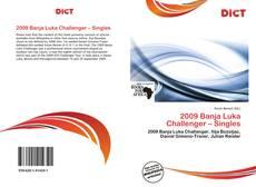 2009 Banja Luka Challenger – Singles的封面