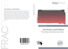 Bookcover of Twin Brooks, South Dakota
