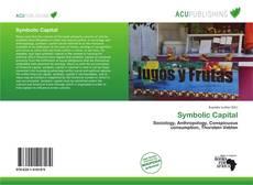 Capa do livro de Symbolic Capital