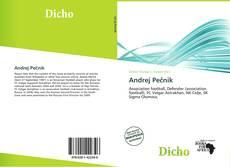 Bookcover of Andrej Pečnik