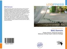 Bookcover of BAG Domain