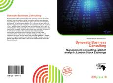 Synovate Business Consulting的封面
