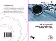 Bookcover of Joe Bridgewater