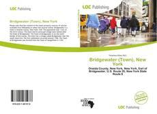 Bookcover of Bridgewater (Town), New York