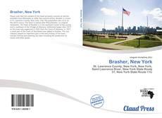 Bookcover of Brasher, New York