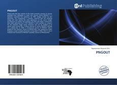 Capa do livro de PNGOUT