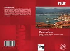 Capa do livro de Montebelluna