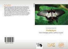 Pachydyta的封面