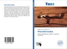 Pterothrixidia的封面