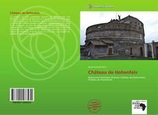 Couverture de Château de Hohenfels