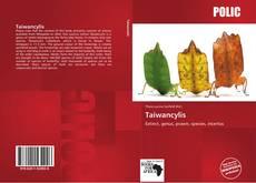 Обложка Taiwancylis