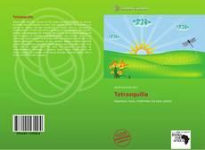 Borítókép a  Tetrasquilla - hoz