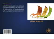 Chitala Borneensis kitap kapağı