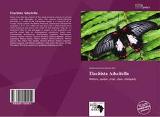 Elachista Adscitella的封面