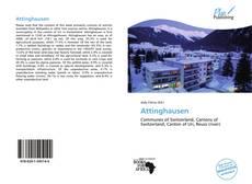Couverture de Attinghausen