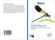 Portada del libro de Triodia Amasinus