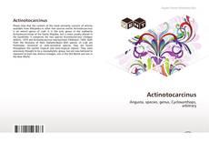 Bookcover of Actinotocarcinus