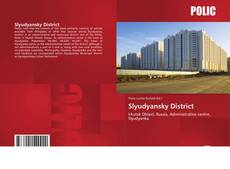 Slyudyansky District kitap kapağı