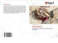 Bookcover of Cyanagraea