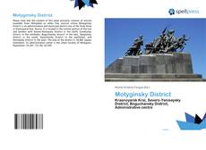 Capa do livro de Motyginsky District