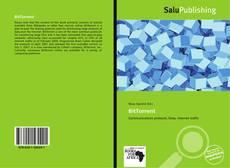 Buchcover von BitTorrent