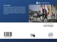 Bookcover of Breil/ Brigels