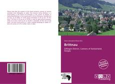 Bookcover of Brittnau