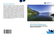 Bookcover of Bichelsee-Balterswil