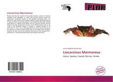 Bookcover of Liocarcinus Marmoreus